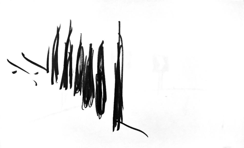 14-web