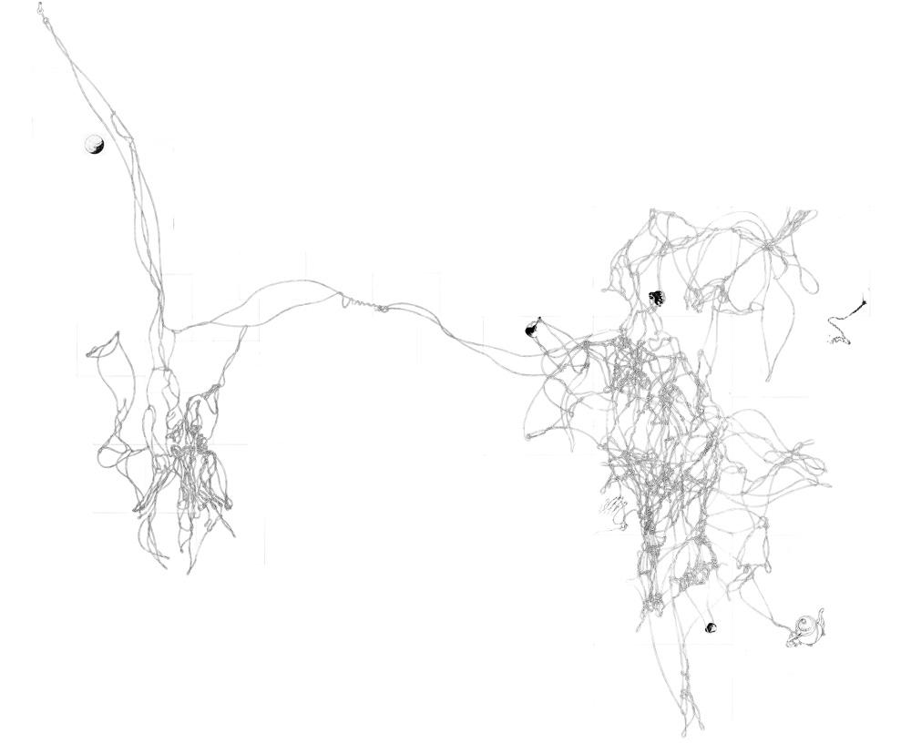 1-montaggio-corde-totale-web