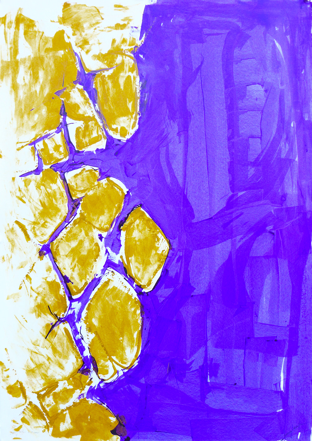 web-astrat-senape-viola-2006
