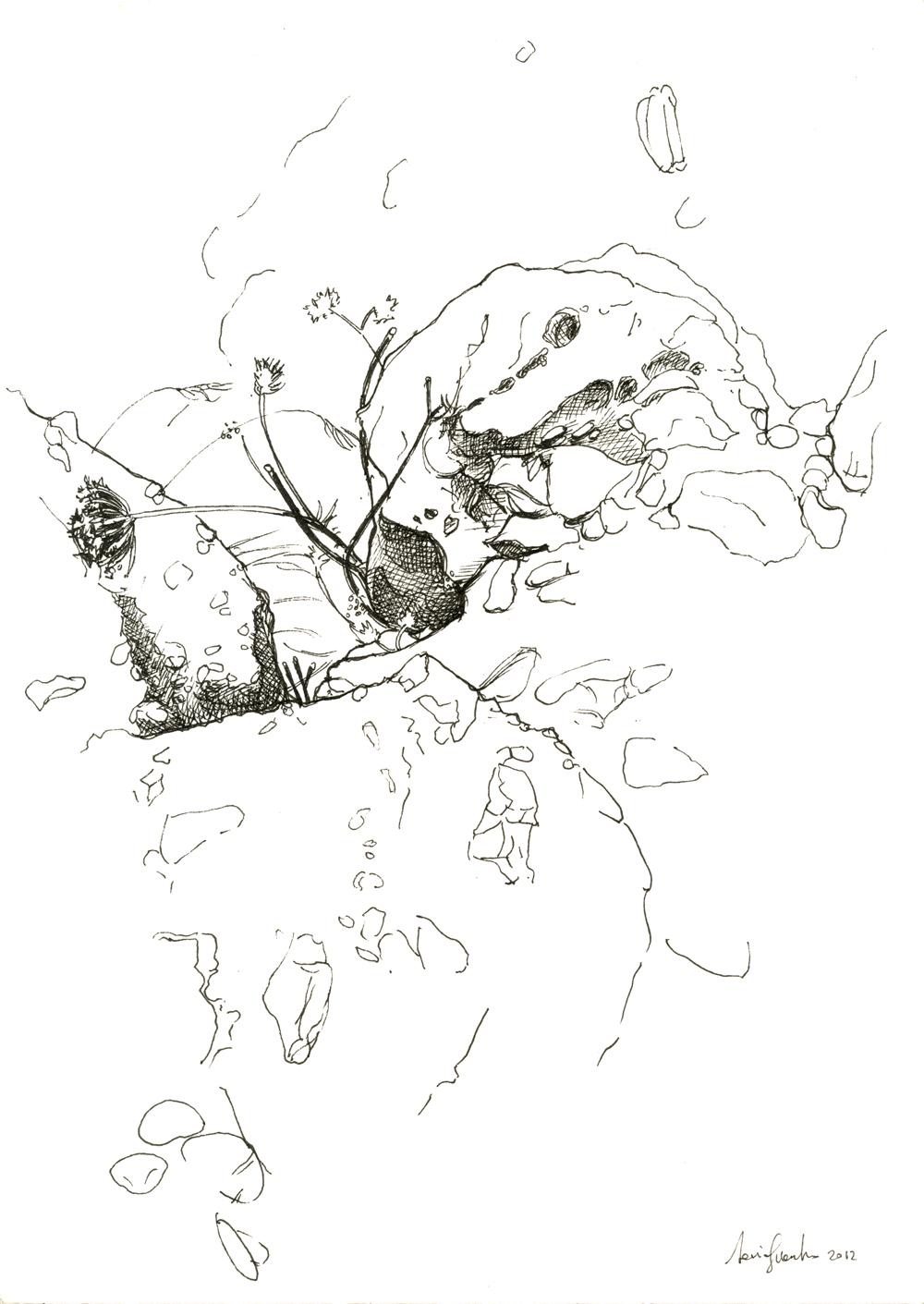 web-rocce-sul-gargano-2012